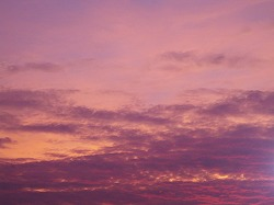 s-2012年08月29日_IMG_1635