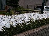 s-DSC_0128.jpg
