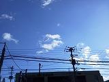 s-NEC_0175.jpg